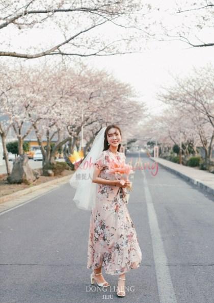 Camelias Jeju pre wedding photo 37