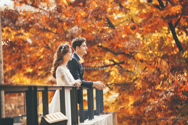 fall-(12)