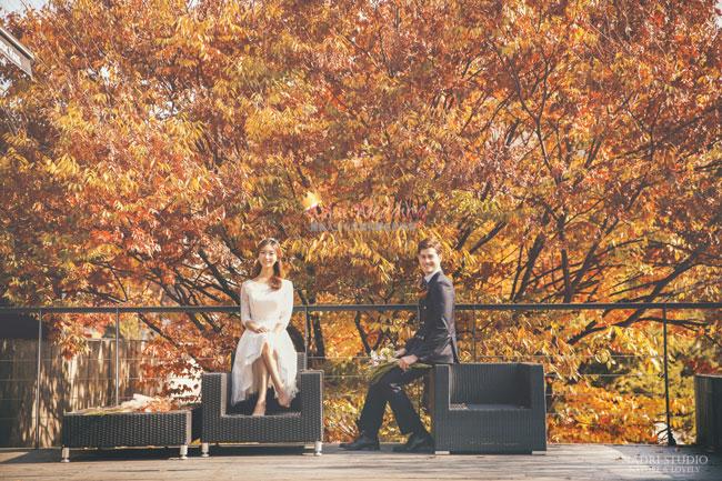 fall-(13)