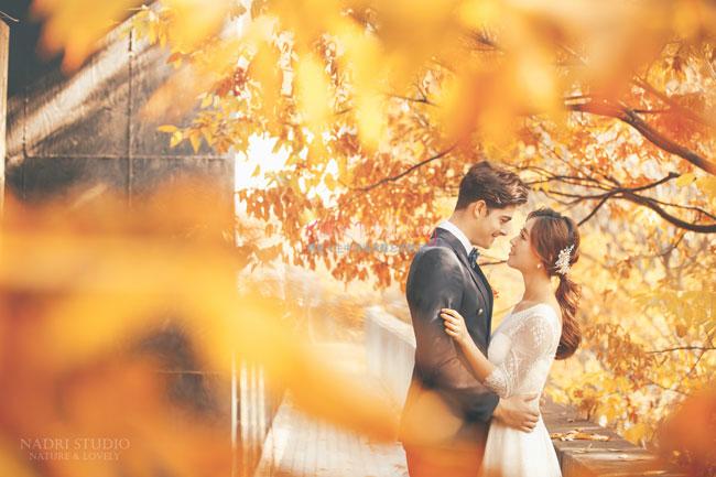 fall-(15)