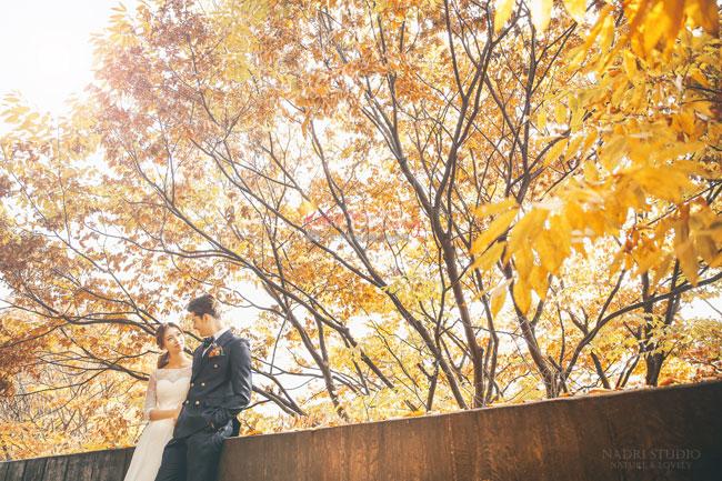 fall-(17)