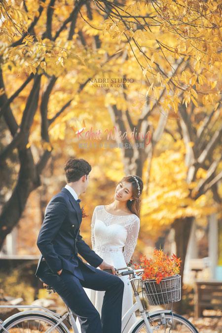 fall-(4)