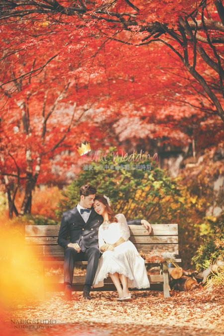 fall-(7)