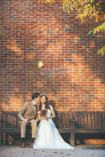 fall leaves pre wedding shoot