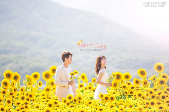 Korea-Pre-Wedding-Wedding-Shoot-Nadri-59