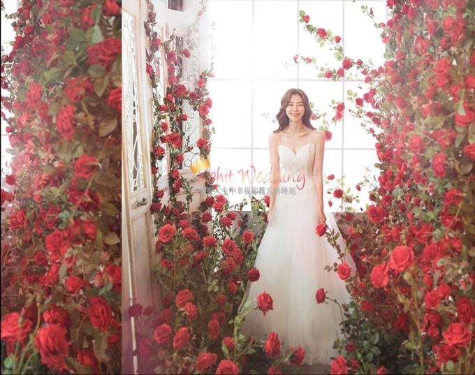 Flower Moon- Kohit Wedding korea prewedding 38