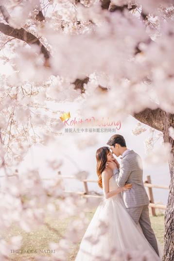 kohit-wedding-korea-pre-wedding-cherry-blossom-23