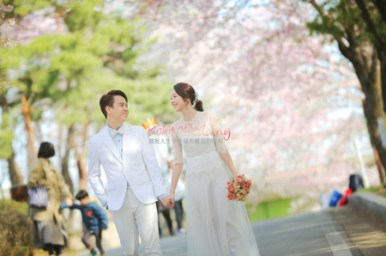 cherry blossom prewedding shoot in Korea