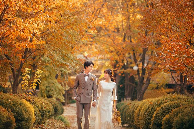Kohit wedding prewedding in Korea - Nadri studio 62