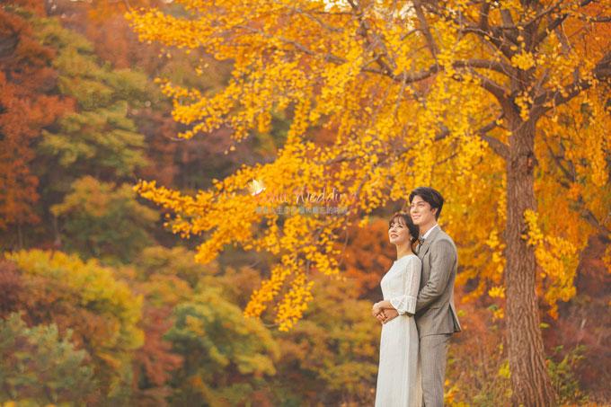 Kohit wedding prewedding in Korea - Nadri studio 65
