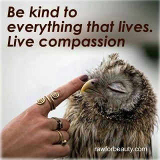 Make it a Better Place #1000Speak #Compassion
