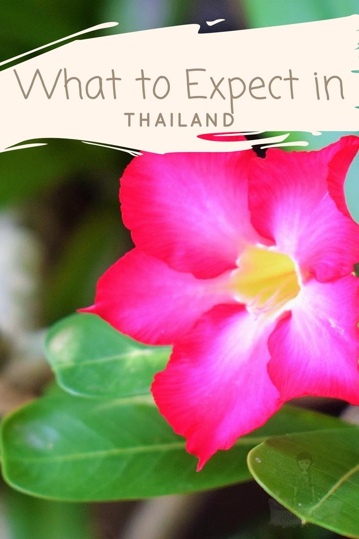 What to expect in Thailand - Bangkok - Phuket - Krabi - Pattaya