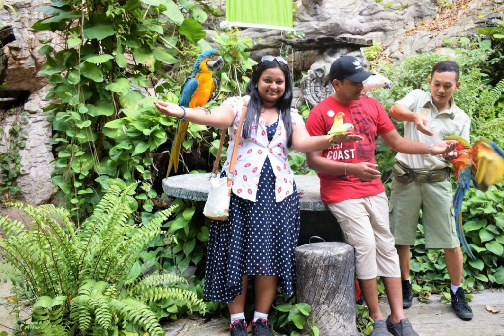 Pic with Birds
