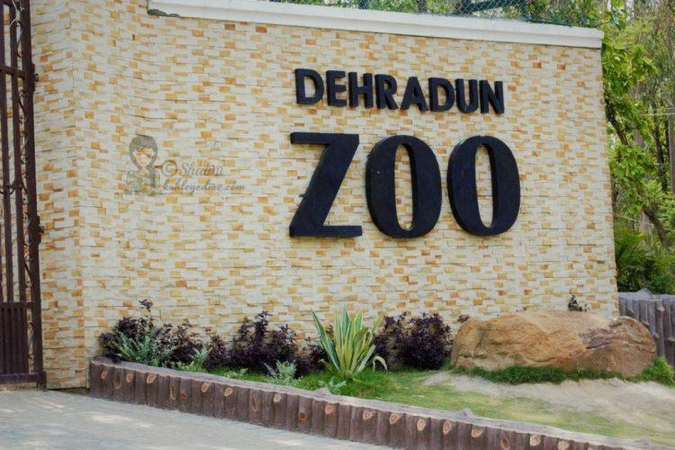 Malsi Deer Park - Dehradun Zoo - Dehradun Park
