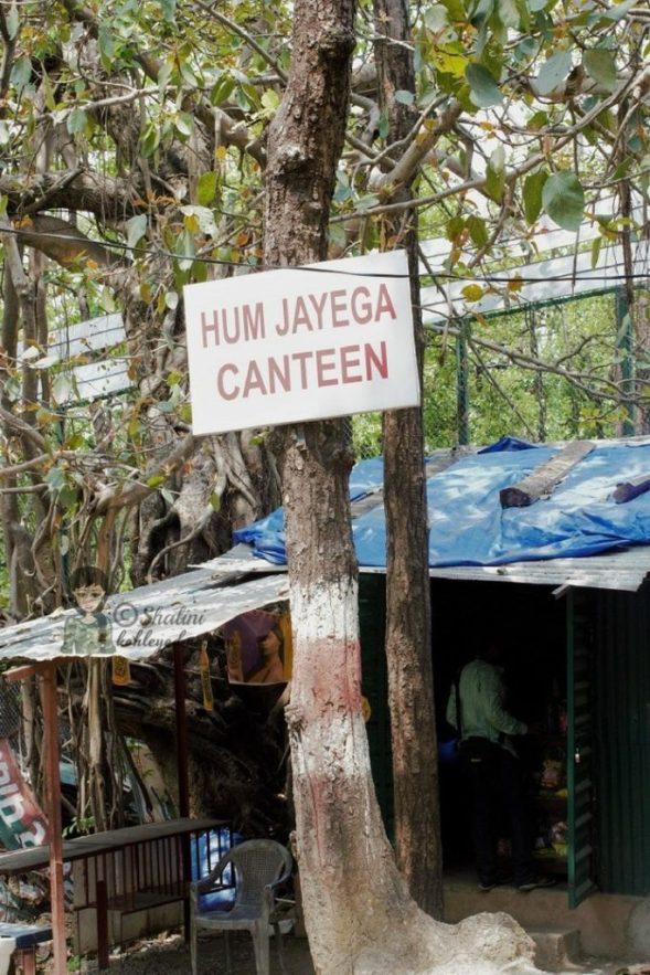 Malsi Deer Park Canteen
