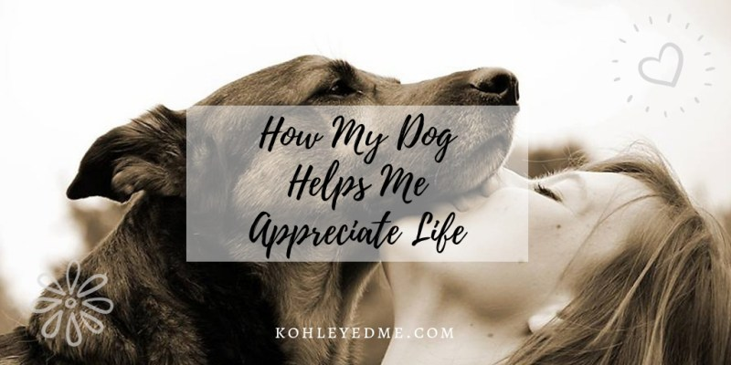 How my dog helps me appreciate life