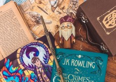 11 Best quots by albus dumbledore that would brighten your day