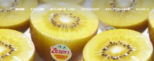 Web キャプチャ 25 8 2021 204819 www.zespri.com  300x119 - スーパーで買える無添加食パンの評価!食パンと食べる無添加食材も!