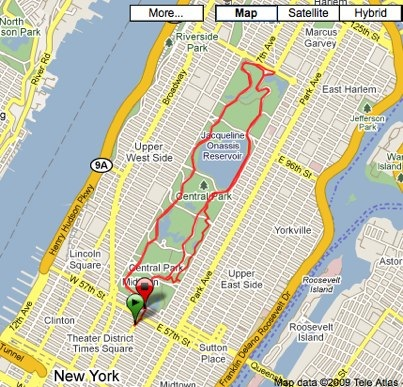 Garmin Connect - Activity Details for In New York City, Day 1.jpg