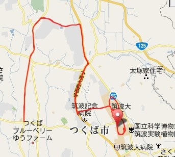 Garmin Connect -Player for Tsukuba Marathon 2009.jpg