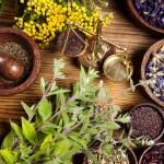 Ήρθε η ώρα να εκμεταλλευτούμε τα αρωματικά και φαρμακευτικά φυτά της Ελλάδας
