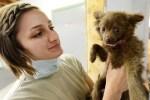 動物病院もう決めた?子犬のうちのかかりつけ選びが大事な理由と6つのチェックポイント