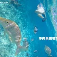 「コマカ島」魚が間近に見れる無人島 | 沖縄県南城市知念