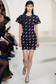 christian-dior-spring-2014-couture-19_115206216520