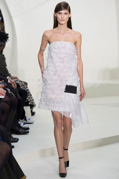 christian-dior-spring-2014-couture-51_115257178719
