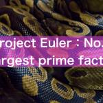 【Project Euler】No3:Largest prime factor 解答例【Python】