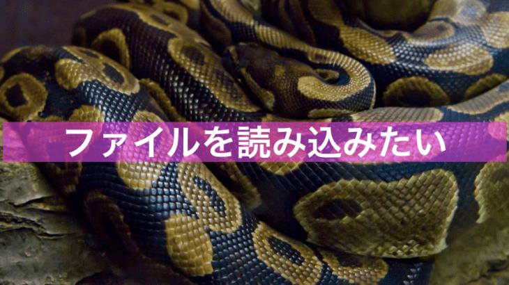 【Python】ファイル読み込みをしたい