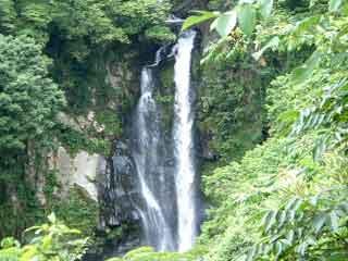 【たじまる】 涼しい風景「滝」