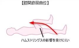 股関節屈曲2(膝関節屈曲)