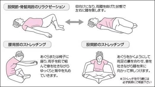 妊娠中の股関節痛や腰痛の原因は?4