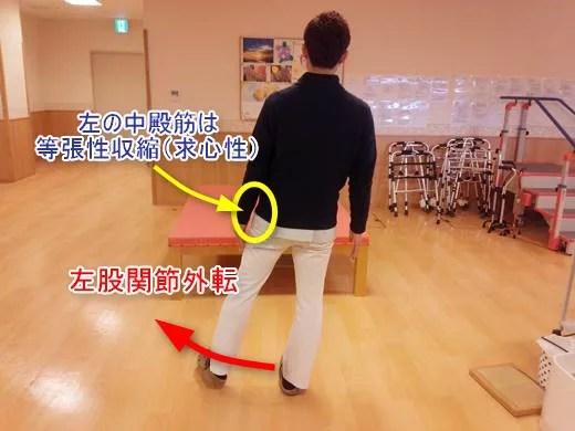 横歩きリハビリの効果と中殿筋の筋活動は?7