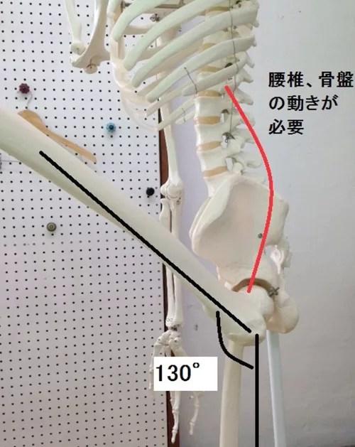 しゃがむと股関節が痛い!その原因はどこにある?4