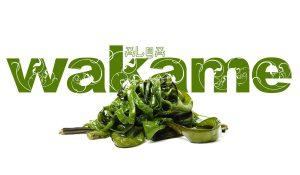 alga wakame koketo