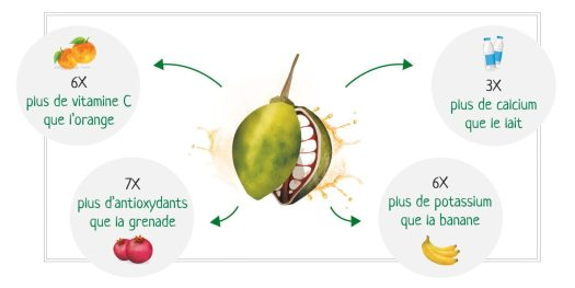 Les-vertus-du-fruit-de-baobab-Matahi-e1522919585665