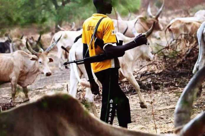 I Am Not Defending Herdsmen But They Have No Option - Bala Mohammed Insists On AK-47 Statement
