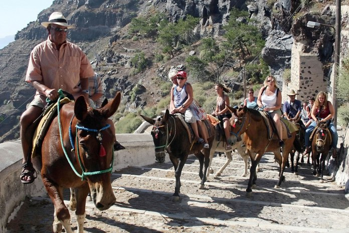 Greece Bans Obese Tourists From Riding On Donkeys 2