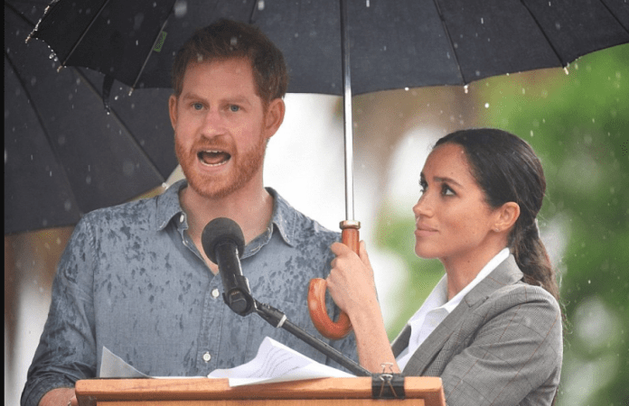 """I've Got My Wife"" Says Prince Harry As Meghan Holds An Umbrella Over Him While Giving A Speech 2"