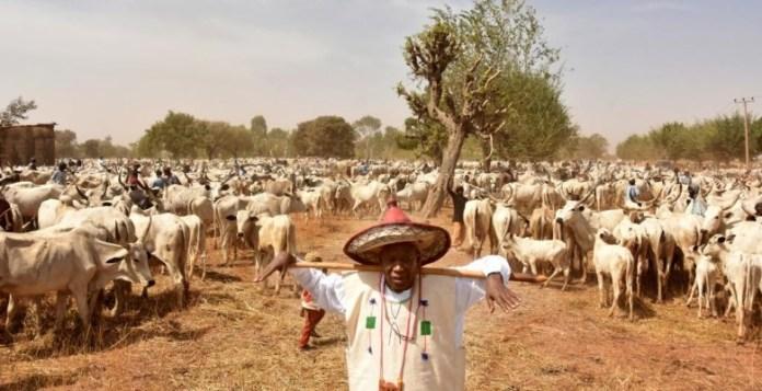 Killer Herdsmen Should Go To Bala Mohammed's State - Ortom Tells Herders