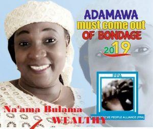 2019 Adamawa Governorship Election: Meet Governorship Aspirant, Na'ama Bulama 1