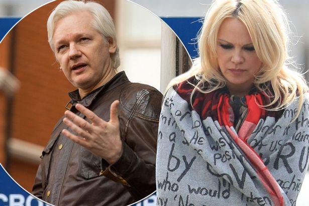 Sweden Reopens Julian Assange's Rape Investigation 3