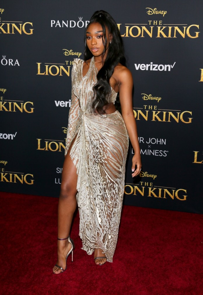 Check Out All The Glamorous Looks From The World Premiere Of The Lion King 12