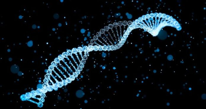 DNA Test Is A Must! Doctor Says 3 Out Of 10 Men Are Not The Real Fathers Of Their Children