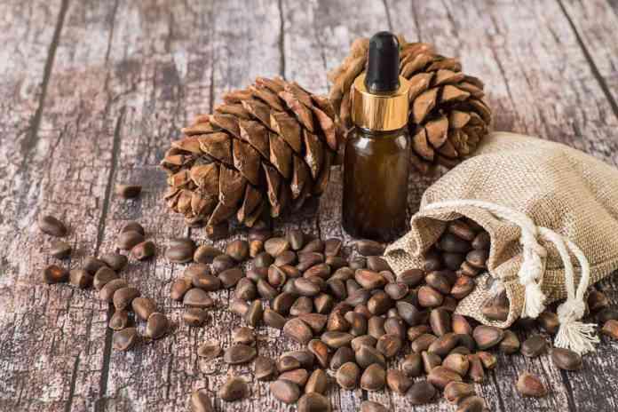 cedarwood essential oil koko tv ng