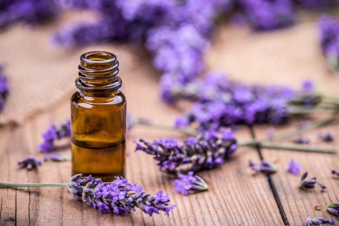 lavender oil hair oil for hair growth