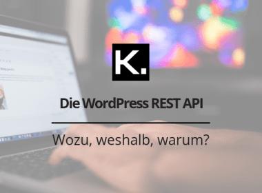 REST API