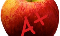 Public school teacher performance evals may be unfair